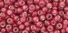 TR-08-2113_S:L Milky Pomegranate